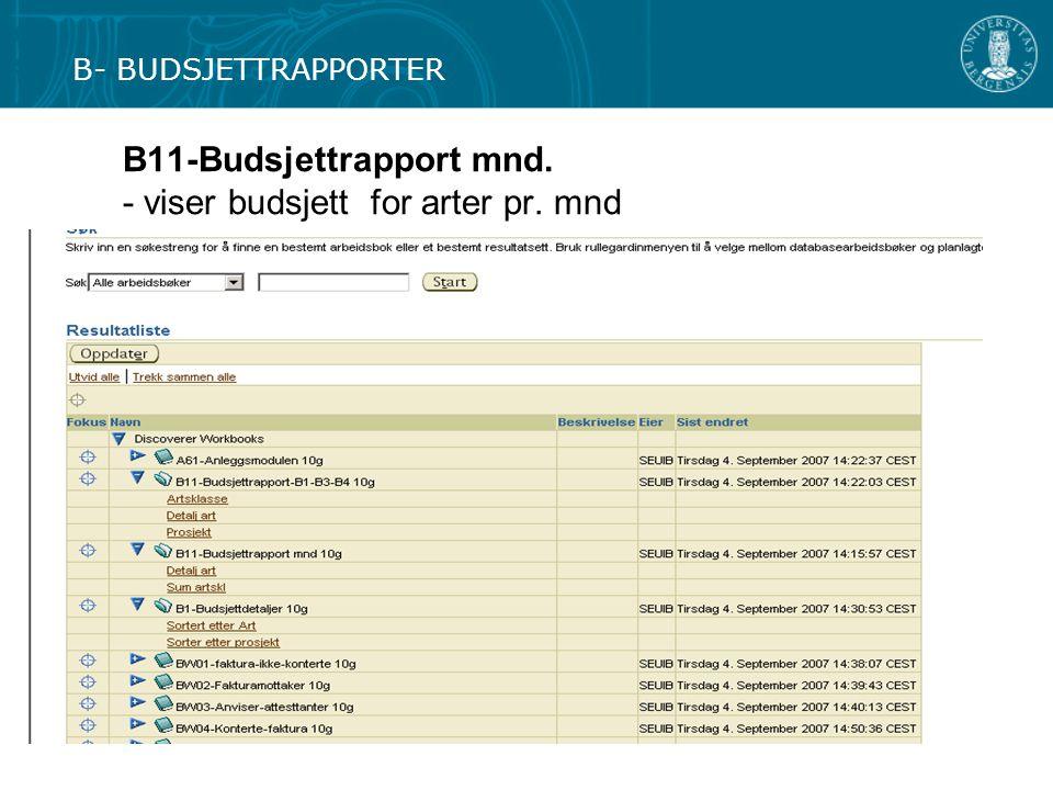 B11-Budsjettrapport mnd. - viser budsjett for arter pr. mnd B- BUDSJETTRAPPORTER