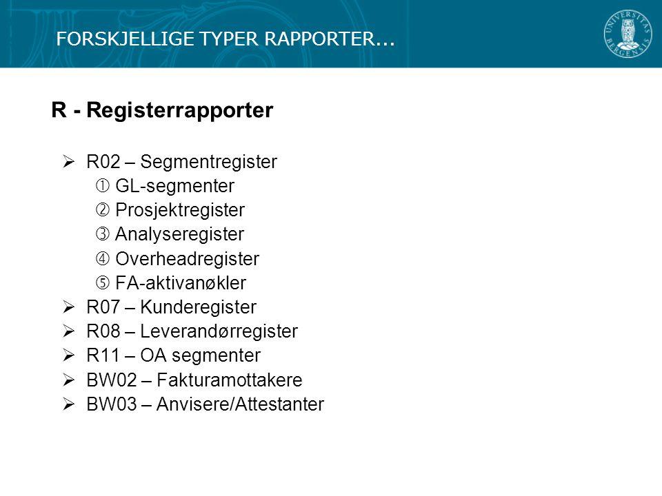 R - Registerrapporter  R02 – Segmentregister  GL-segmenter  Prosjektregister  Analyseregister  Overheadregister  FA-aktivanøkler  R07 – Kundere