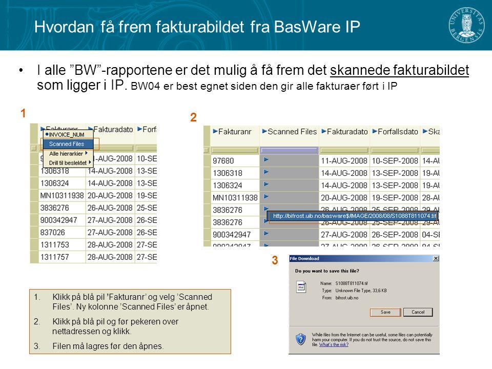 """I alle """"BW""""-rapportene er det mulig å få frem det skannede fakturabildet som ligger i IP. BW04 er best egnet siden den gir alle fakturaer ført i IP 1."""