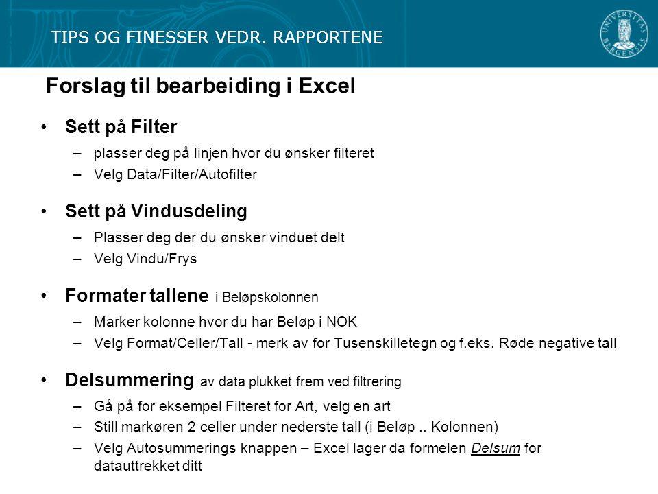 Forslag til bearbeiding i Excel TIPS OG FINESSER VEDR. RAPPORTENE Sett på Filter –plasser deg på linjen hvor du ønsker filteret –Velg Data/Filter/Auto