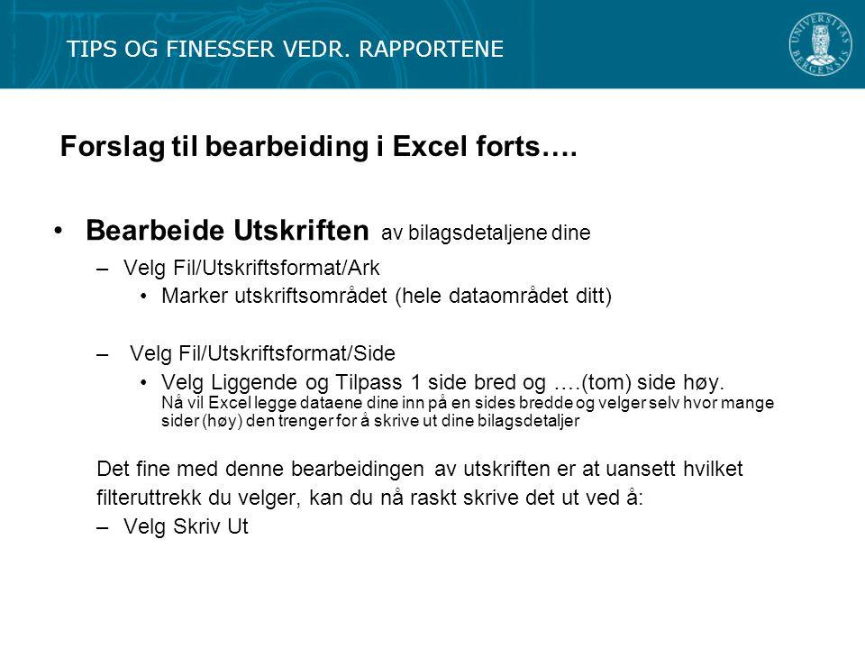 Forslag til bearbeiding i Excel forts…. Bearbeide Utskriften av bilagsdetaljene dine –Velg Fil/Utskriftsformat/Ark Marker utskriftsområdet (hele datao
