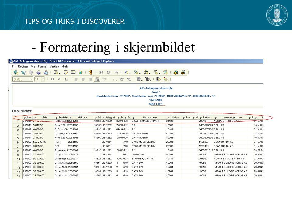 - Formatering i skjermbildet TIPS OG TRIKS I DISCOVERER