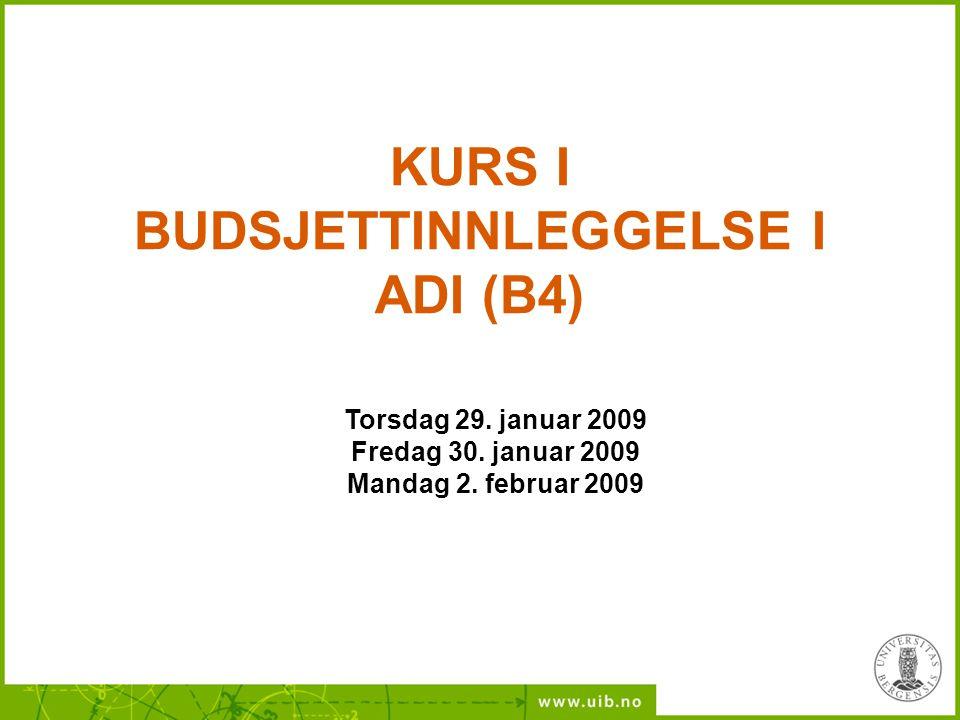 KURS I BUDSJETTINNLEGGELSE I ADI (B4) Torsdag 29. januar 2009 Fredag 30. januar 2009 Mandag 2. februar 2009