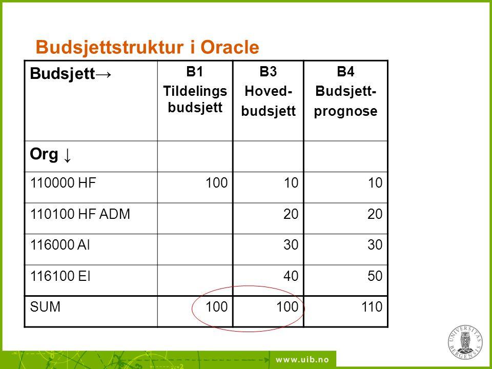 Budsjettstruktur i Oracle Budsjett→ B1 Tildelings budsjett B3 Hoved- budsjett B4 Budsjett- prognose Org ↓ 110000 HF10010 110100 HF ADM20 116000 AI30 1