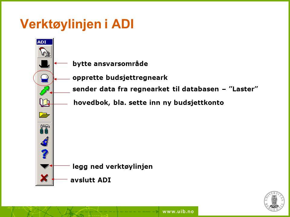 """Verktøylinjen i ADI bytte ansvarsområde opprette budsjettregneark sender data fra regnearket til databasen – """"Laster"""" legg ned verktøylinjen avslutt A"""