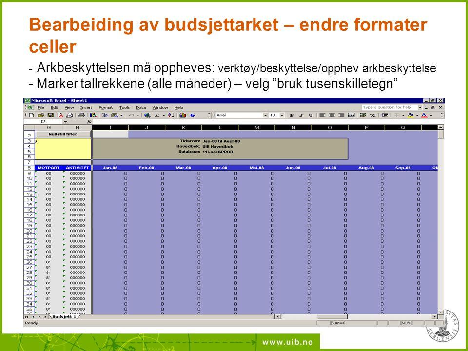 Bearbeiding av budsjettarket – endre formater celler - Arkbeskyttelsen må oppheves: verktøy/beskyttelse/opphev arkbeskyttelse - Marker tallrekkene (al
