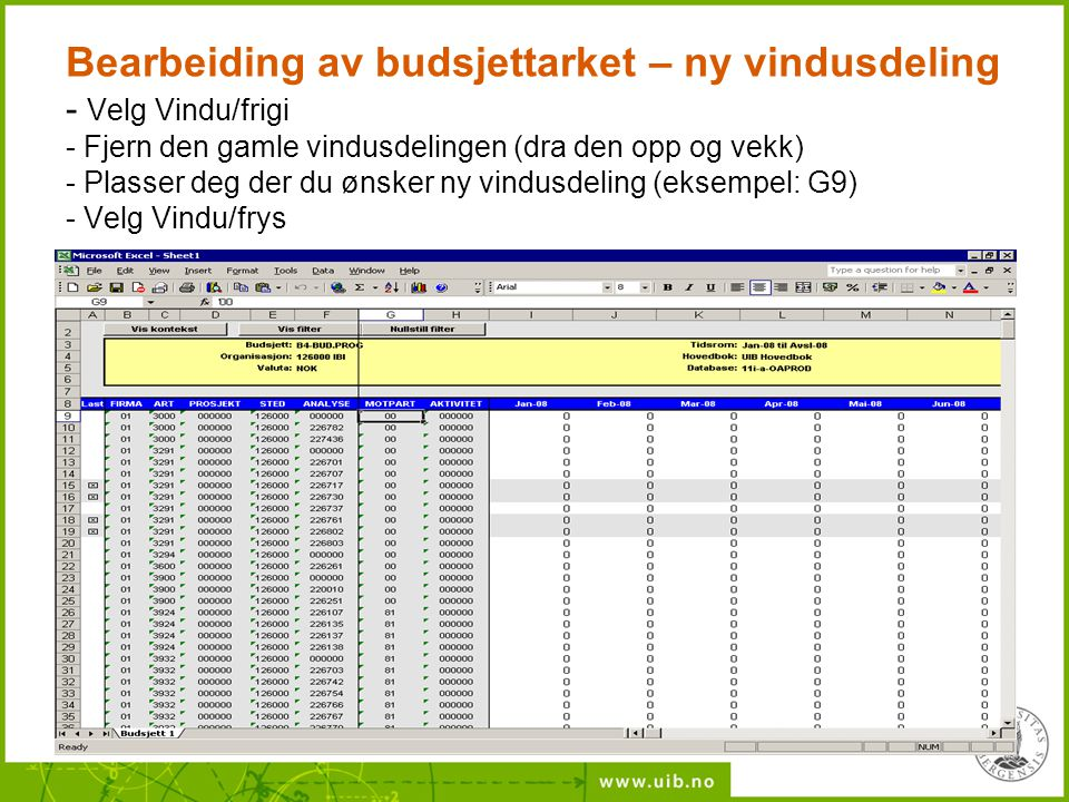 Bearbeiding av budsjettarket – ny vindusdeling - Velg Vindu/frigi - Fjern den gamle vindusdelingen (dra den opp og vekk) - Plasser deg der du ønsker n