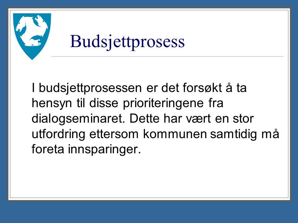 Budsjettprosess I budsjettprosessen er det forsøkt å ta hensyn til disse prioriteringene fra dialogseminaret.