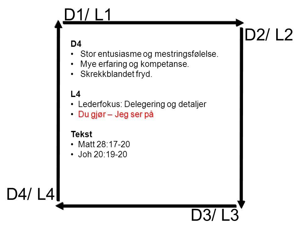 D1/ L1 D2/ L2 D3/ L3 D4 Stor entusiasme og mestringsfølelse.