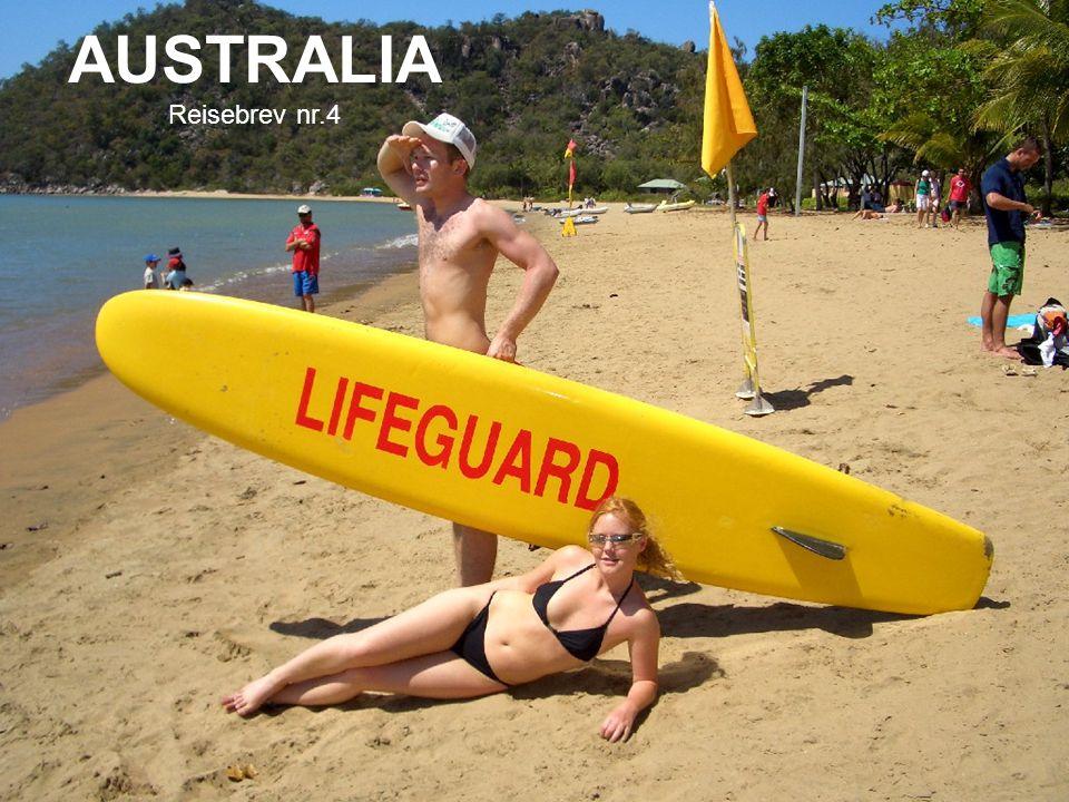 AUSTRALIA Reisebrev nr.4