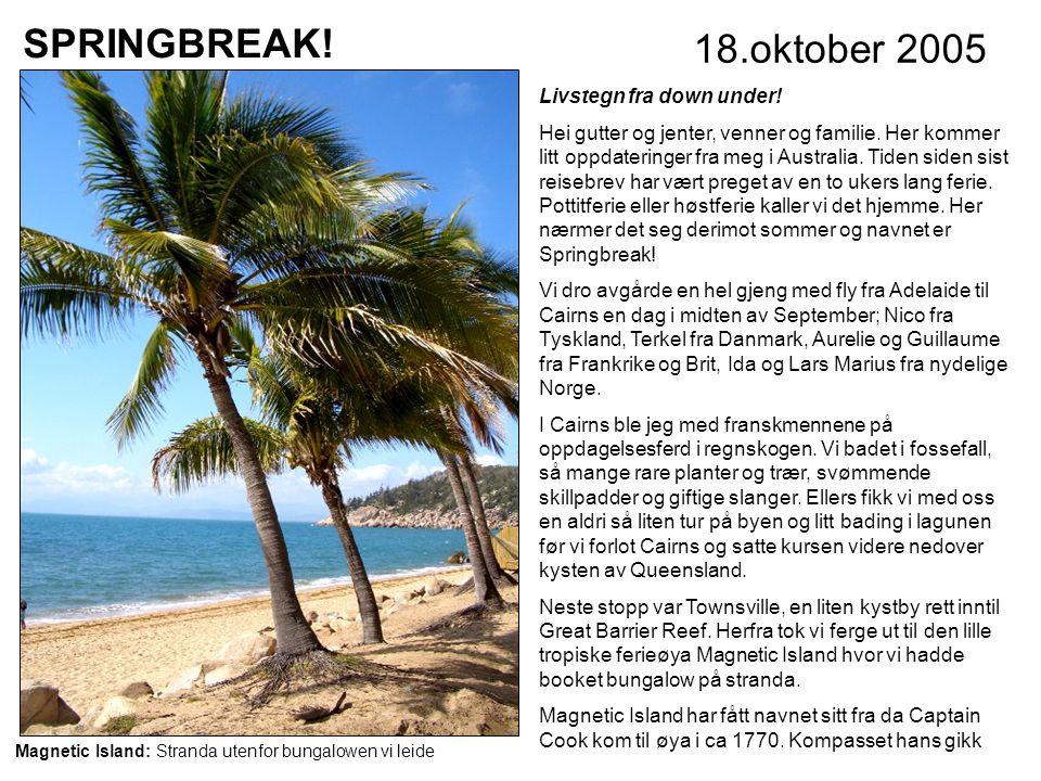SPRINGBREAK.18.oktober 2005 Livstegn fra down under.