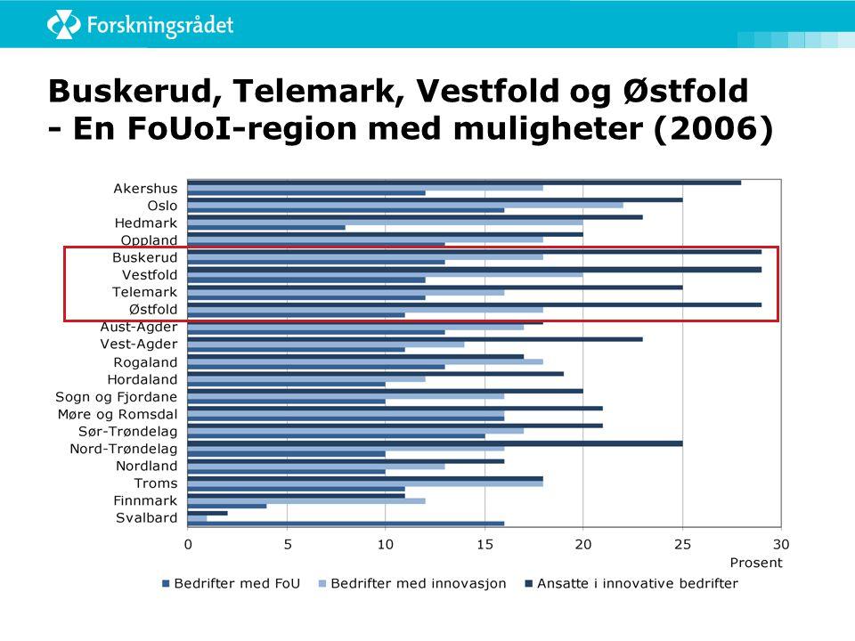 Buskerud, Telemark, Vestfold og Østfold - En FoUoI-region med muligheter (2006)