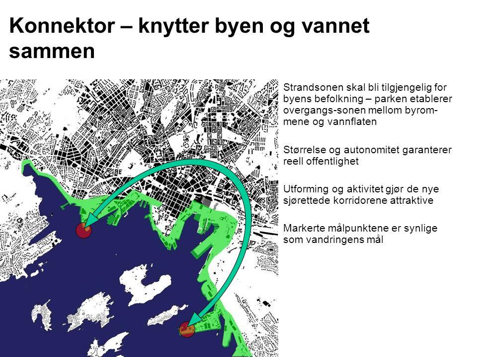 Konnektor – knytter byen og vannet sammen Strandsonen skal bli tilgjengelig for byens befolkning – parken etablerer overgangs-sonen mellom byrom- mene