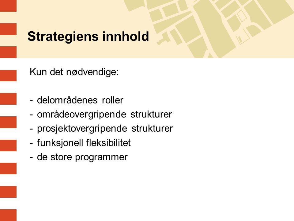 Kun det nødvendige: -delområdenes roller -områdeovergripende strukturer -prosjektovergripende strukturer -funksjonell fleksibilitet -de store programmer Strategiens innhold