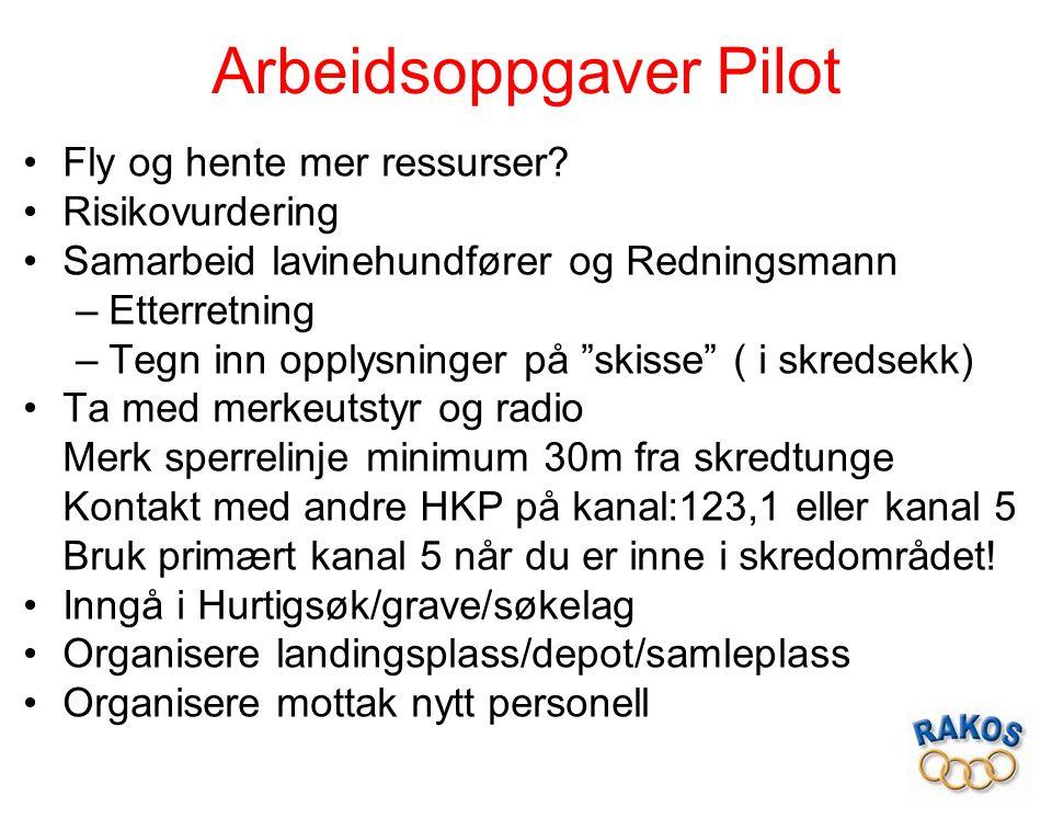 """Arbeidsoppgaver Pilot Fly og hente mer ressurser? Risikovurdering Samarbeid lavinehundfører og Redningsmann –Etterretning –Tegn inn opplysninger på """"s"""