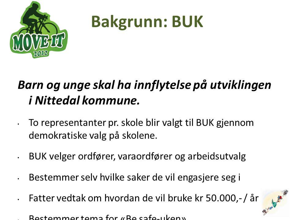 Bakgrunn: BUK Barn og unge skal ha innflytelse på utviklingen i Nittedal kommune. To representanter pr. skole blir valgt til BUK gjennom demokratiske