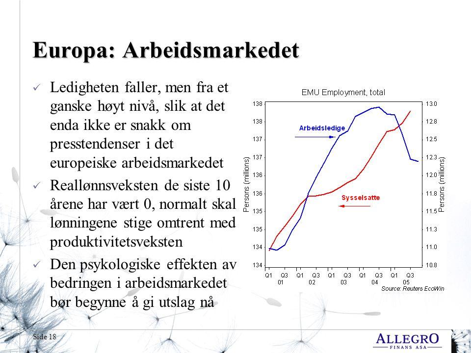 Side 18 Europa: Arbeidsmarkedet Ledigheten faller, men fra et ganske høyt nivå, slik at det enda ikke er snakk om presstendenser i det europeiske arbeidsmarkedet Reallønnsveksten de siste 10 årene har vært 0, normalt skal lønningene stige omtrent med produktivitetsveksten Den psykologiske effekten av bedringen i arbeidsmarkedet bør begynne å gi utslag nå