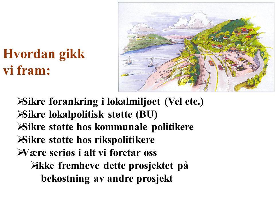 Hvordan gikk vi fram:  Sikre forankring i lokalmiljøet (Vel etc.)  Sikre lokalpolitisk støtte (BU)  Sikre støtte hos kommunale politikere  Sikre s