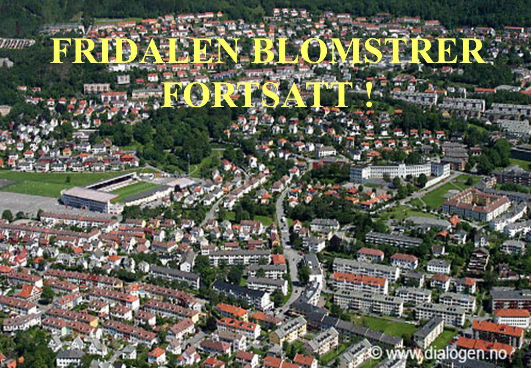 www.fridalenlever.com 20 FRIDALEN BLOMSTRER FORTSATT !