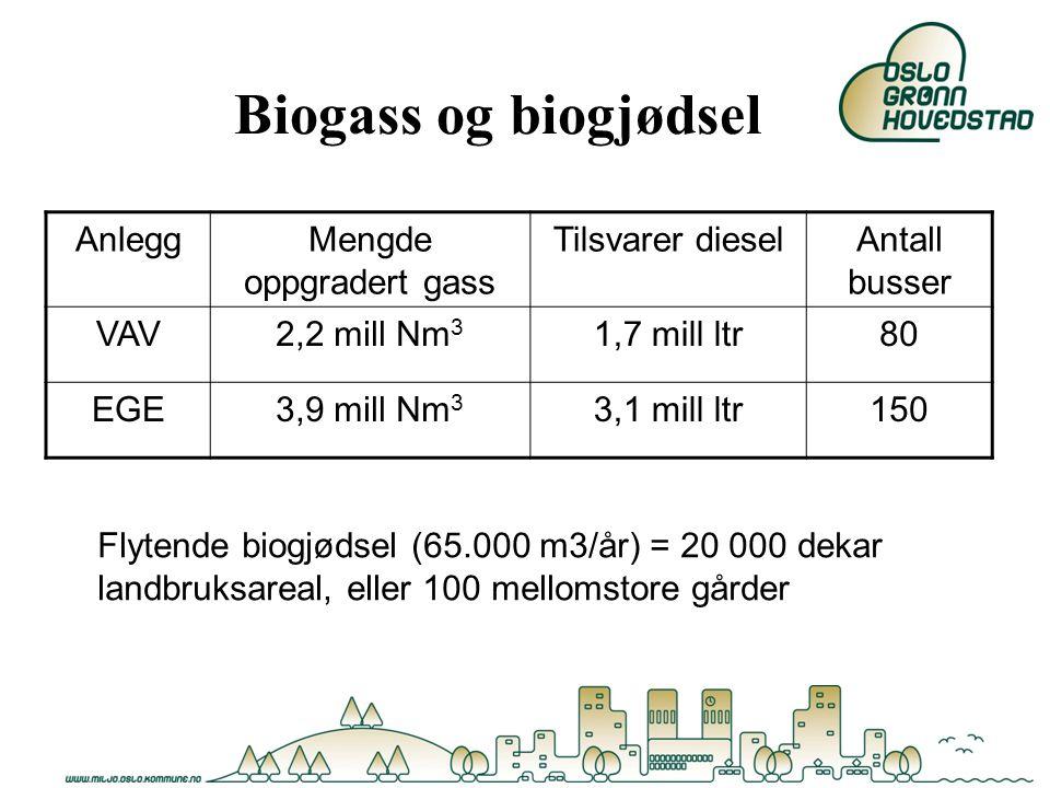 Biogass og biogjødsel AnleggMengde oppgradert gass Tilsvarer dieselAntall busser VAV2,2 mill Nm 3 1,7 mill ltr80 EGE3,9 mill Nm 3 3,1 mill ltr150 Flyt