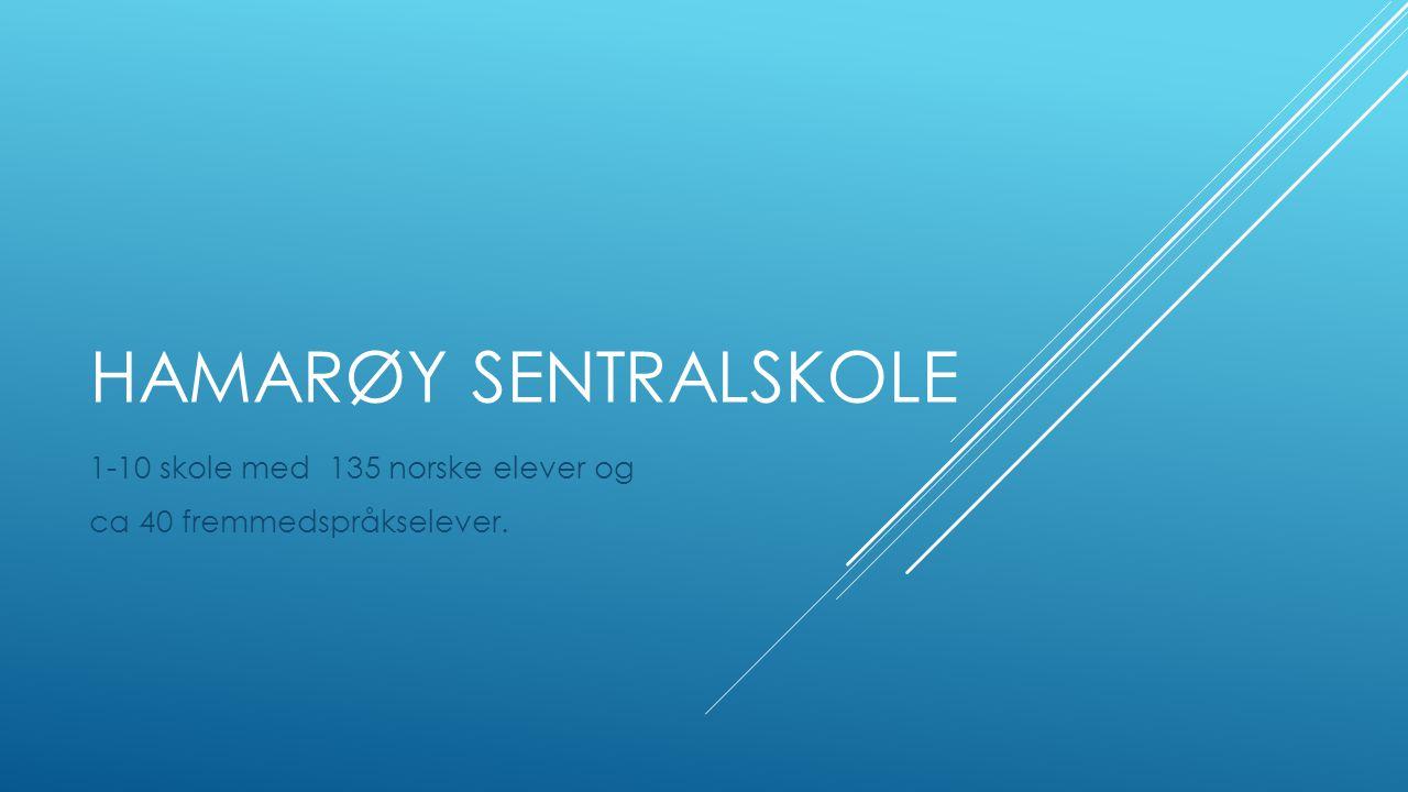 HAMARØY SENTRALSKOLE 1-10 skole med 135 norske elever og ca 40 fremmedspråkselever.