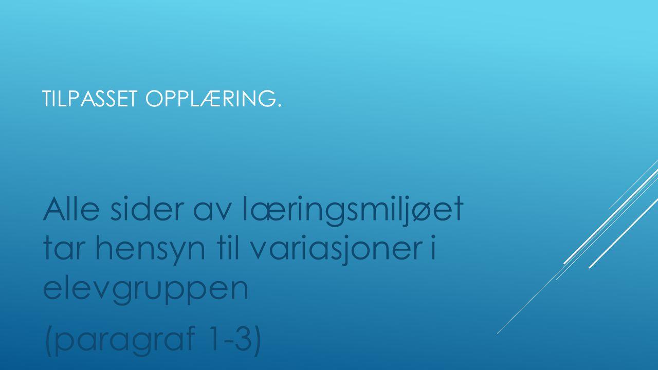 TILPASSET OPPLÆRING  Felles rutiner på Hamarøy Sentralskole - Prinsipper fra veiledet lesing i alle fag.