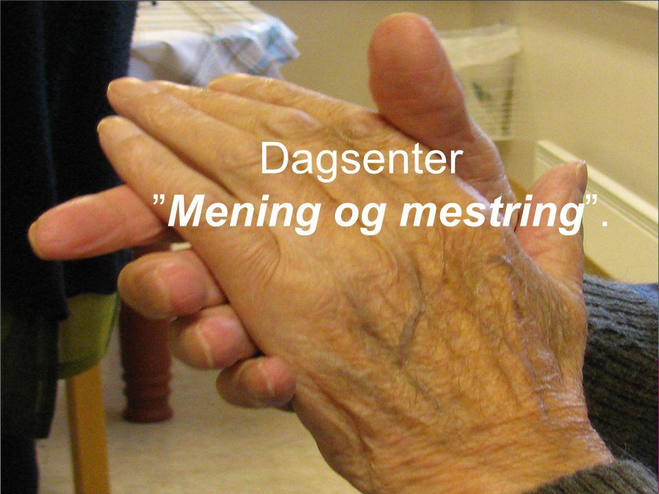 Dagsenter Mening og mestring .