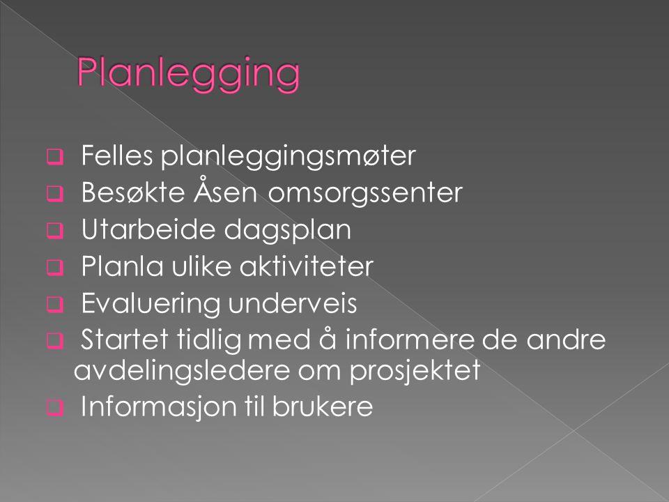  Felles planleggingsmøter  Besøkte Åsen omsorgssenter  Utarbeide dagsplan  Planla ulike aktiviteter  Evaluering underveis  Startet tidlig med å informere de andre avdelingsledere om prosjektet  Informasjon til brukere