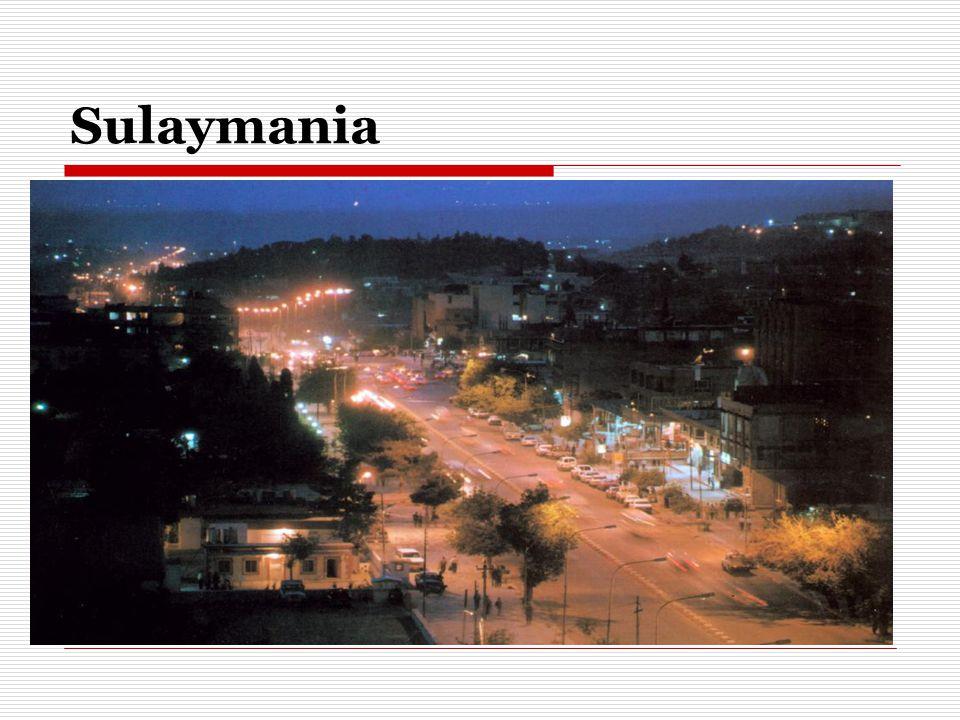 Sulaymania