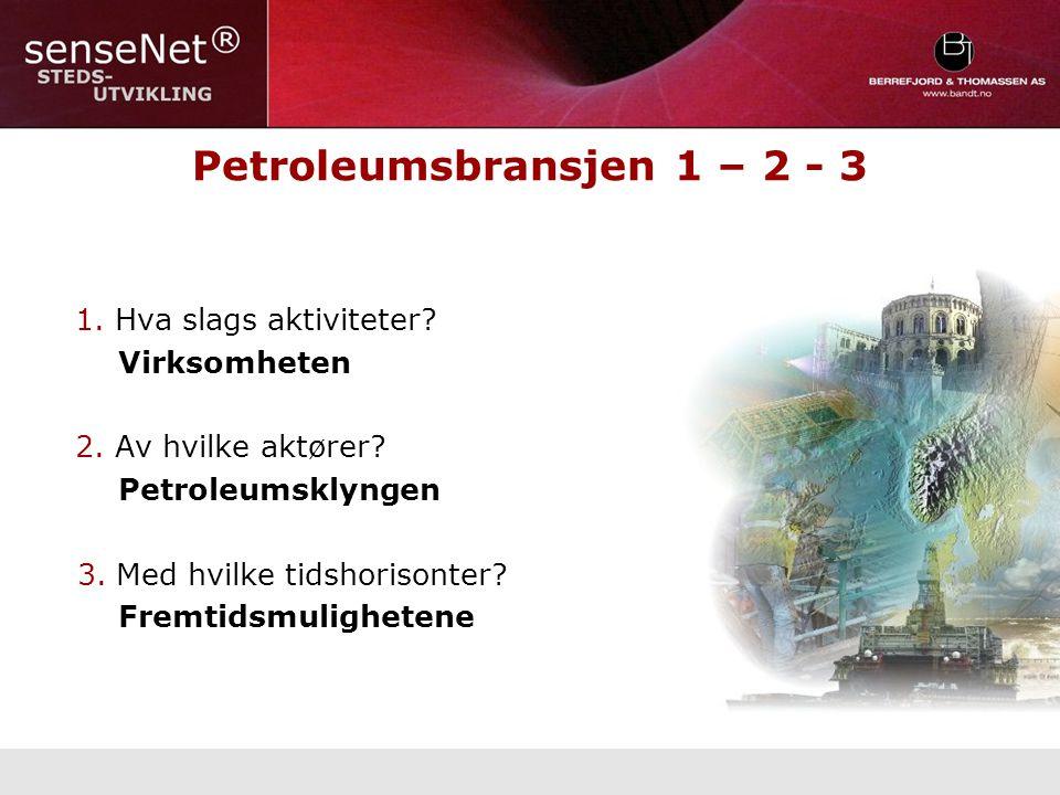 Petroleumsbransjen 1 – 2 - 3 1. Hva slags aktiviteter.