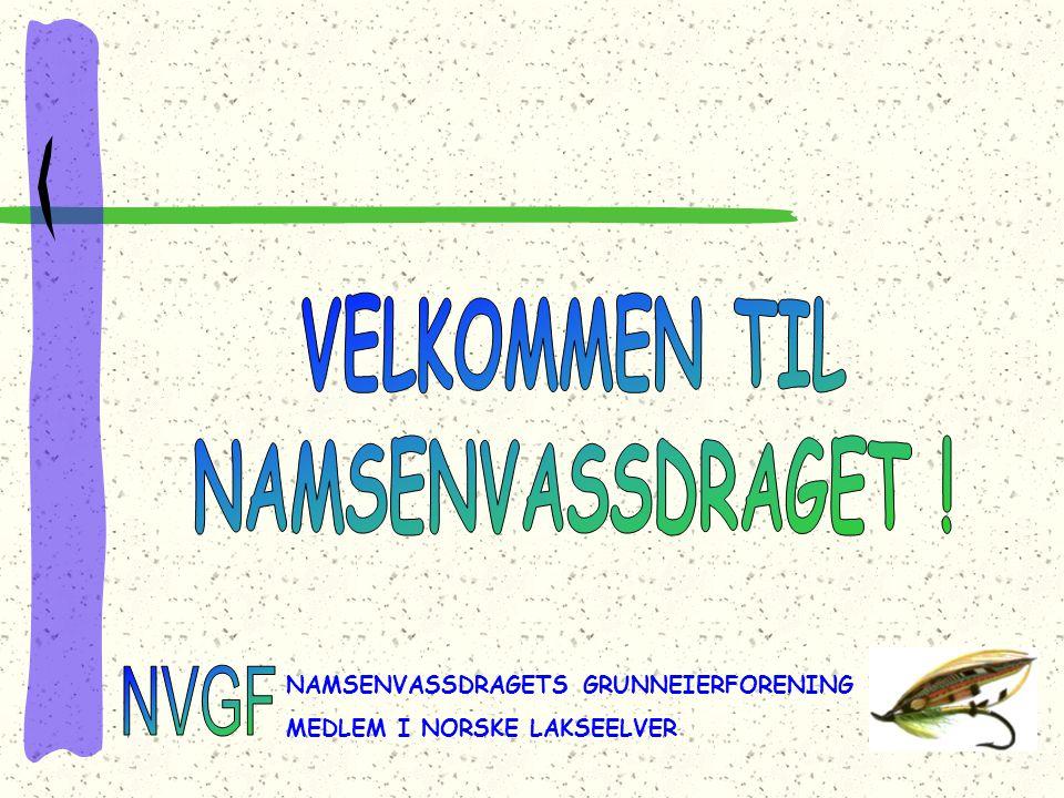 NAMSENVASSDRAGETS GRUNNEIERFORENING MEDLEM I NORSKE LAKSEELVER