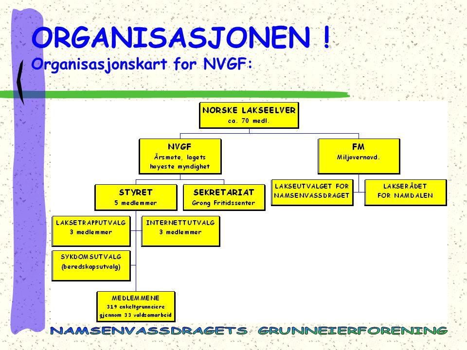 ORGANISASJONEN ! Organisasjonskart for NVGF: