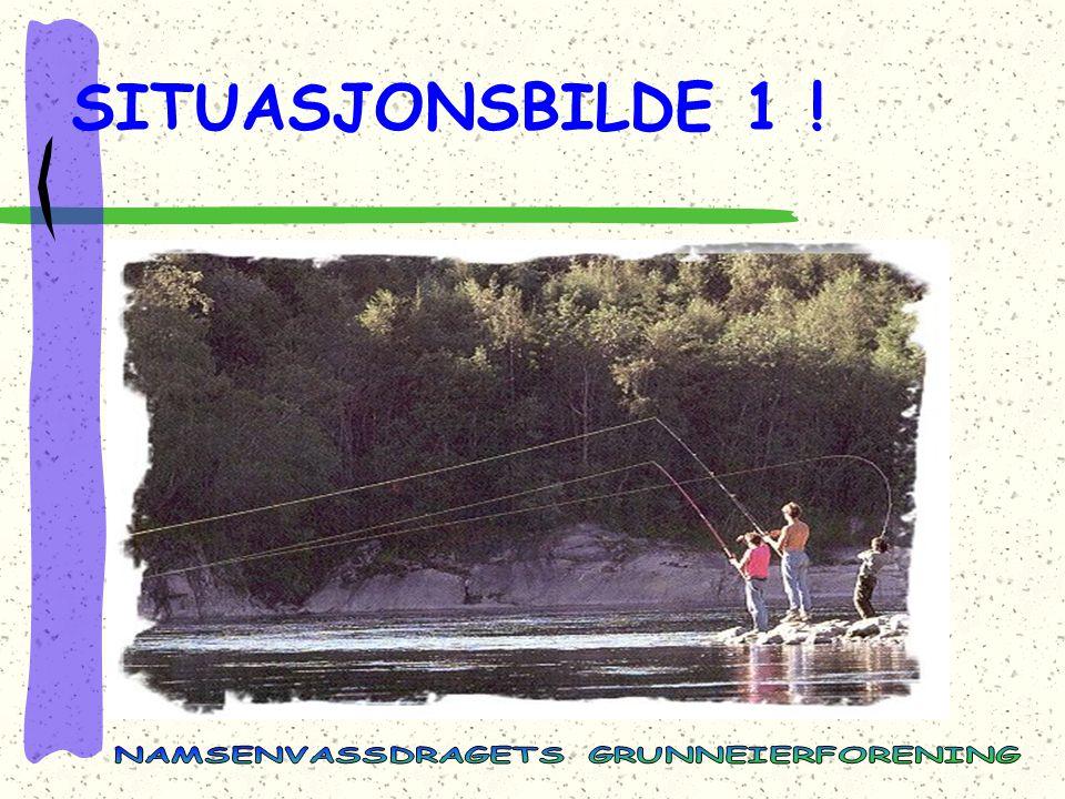 SITUASJONSBILDE 1 !