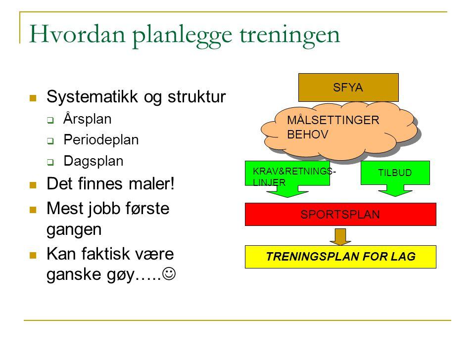Hvordan planlegge treningen Systematikk og struktur  Årsplan  Periodeplan  Dagsplan Det finnes maler.