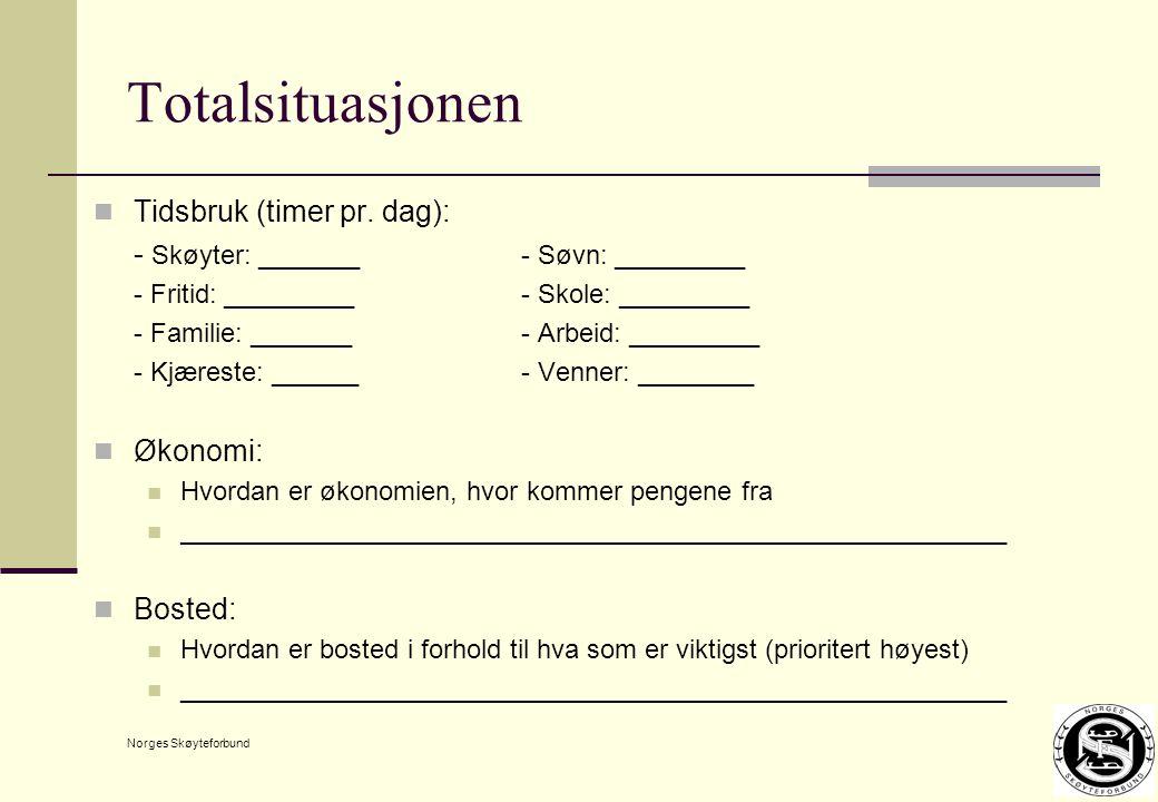 Norges Skøyteforbund Totalsituasjonen Tidsbruk (timer pr.