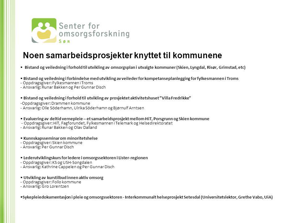  Bistand og veiledning i forhold til utvikling av omsorgsplan i utvalgte kommuner (Skien, Lyngdal, Risør, Grimstad, etc)  Bistand og veiledning i fo