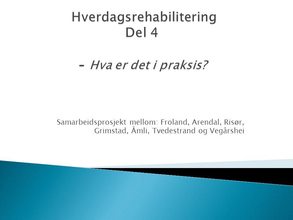 Samarbeidsprosjekt mellom: Froland, Arendal, Risør, Grimstad, Åmli, Tvedestrand og Vegårshei