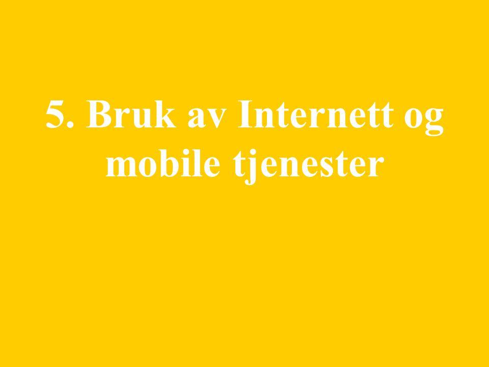 22 5. Bruk av Internett og mobile tjenester