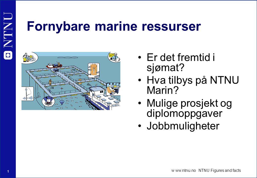 1 w ww.ntnu.no NTNU Figures and facts Fornybare marine ressurser Er det fremtid i sjømat.
