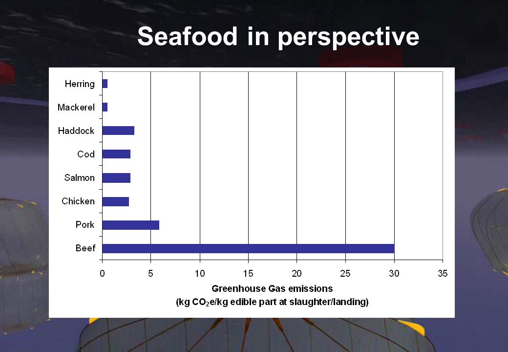 10 Seafood in perspective