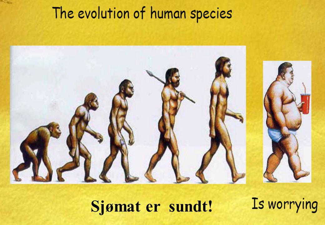 24 w ww.ntnu.no NTNU Figures and facts Sjømat er sundt!