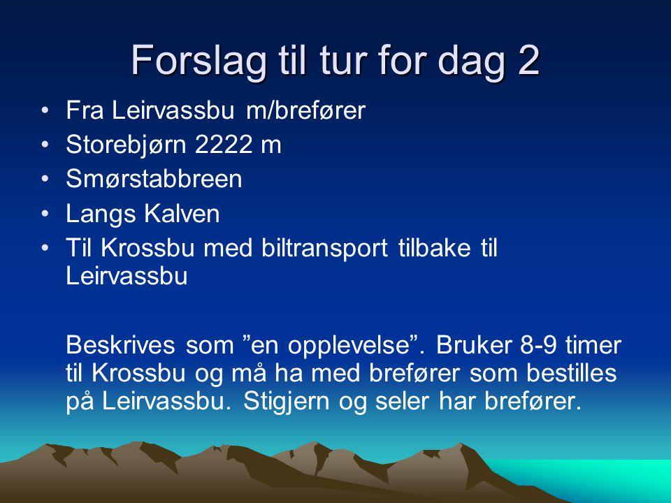 Forslag til tur for dag 1 Leirvassbu Kyrkja 2032 m Over Kyrkjeoksli Langvasshø 2030 m Visbretind 2234 m og retur Leirvassbu Beskrives som en kjempetur og tar 7-8 timer.