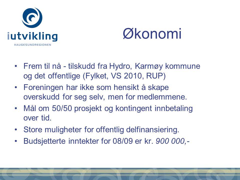 Frem til nå - tilskudd fra Hydro, Karmøy kommune og det offentlige (Fylket, VS 2010, RUP) Foreningen har ikke som hensikt å skape overskudd for seg se