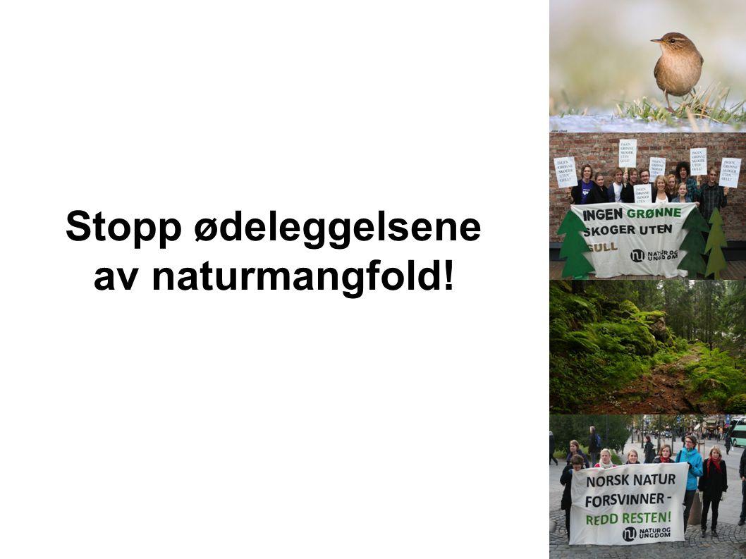 Stopp ødeleggelsene av naturmangfold!