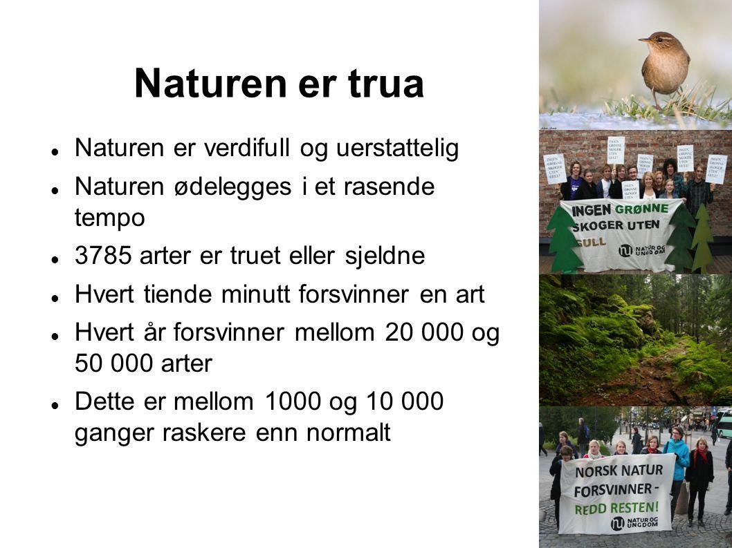 Naturen er trua Naturen er verdifull og uerstattelig Naturen ødelegges i et rasende tempo 3785 arter er truet eller sjeldne Hvert tiende minutt forsvi