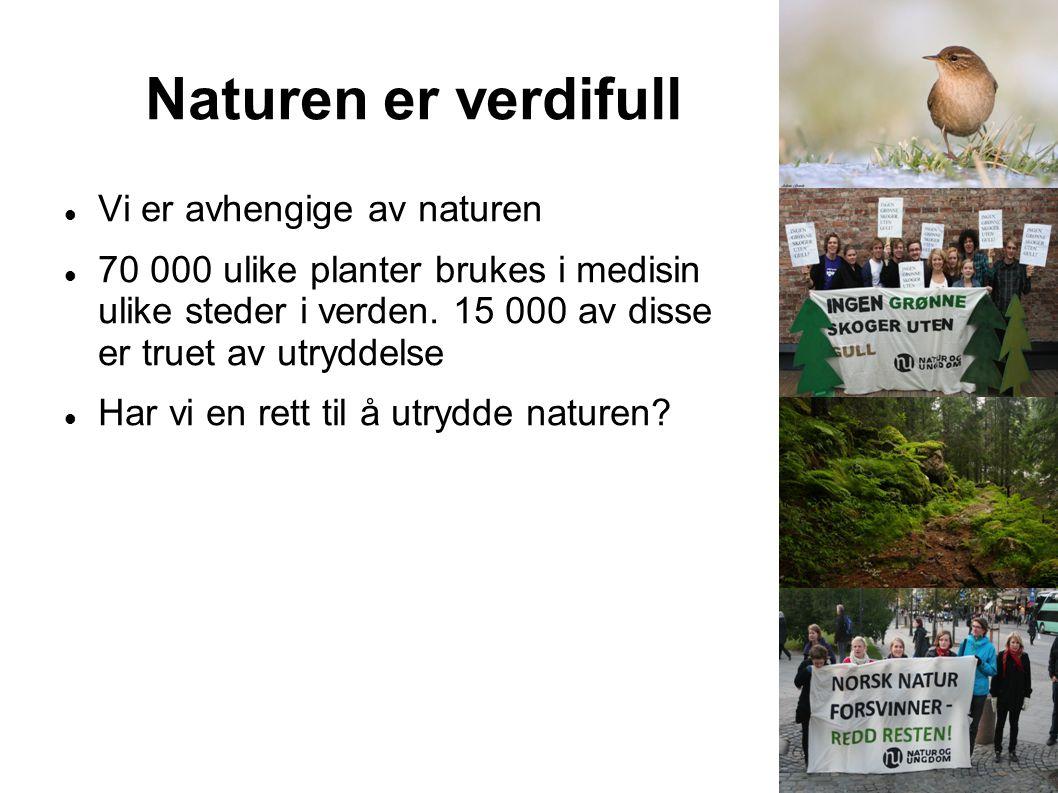Naturen er verdifull Vi er avhengige av naturen 70 000 ulike planter brukes i medisin ulike steder i verden. 15 000 av disse er truet av utryddelse Ha