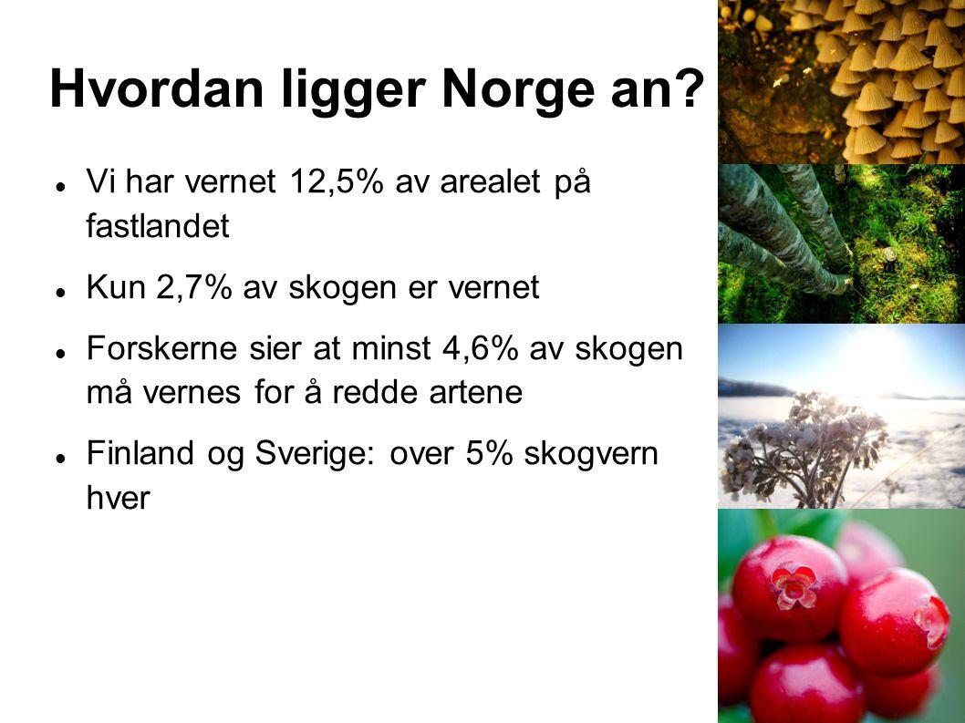 Hvordan ligger Norge an? Vi har vernet 12,5% av arealet på fastlandet Kun 2,7% av skogen er vernet Forskerne sier at minst 4,6% av skogen må vernes fo