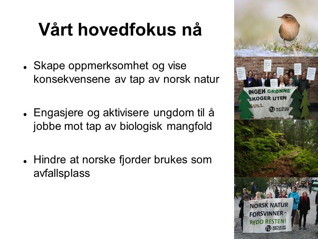 Vårt hovedfokus nå Skape oppmerksomhet og vise konsekvensene av tap av norsk natur Engasjere og aktivisere ungdom til å jobbe mot tap av biologisk man