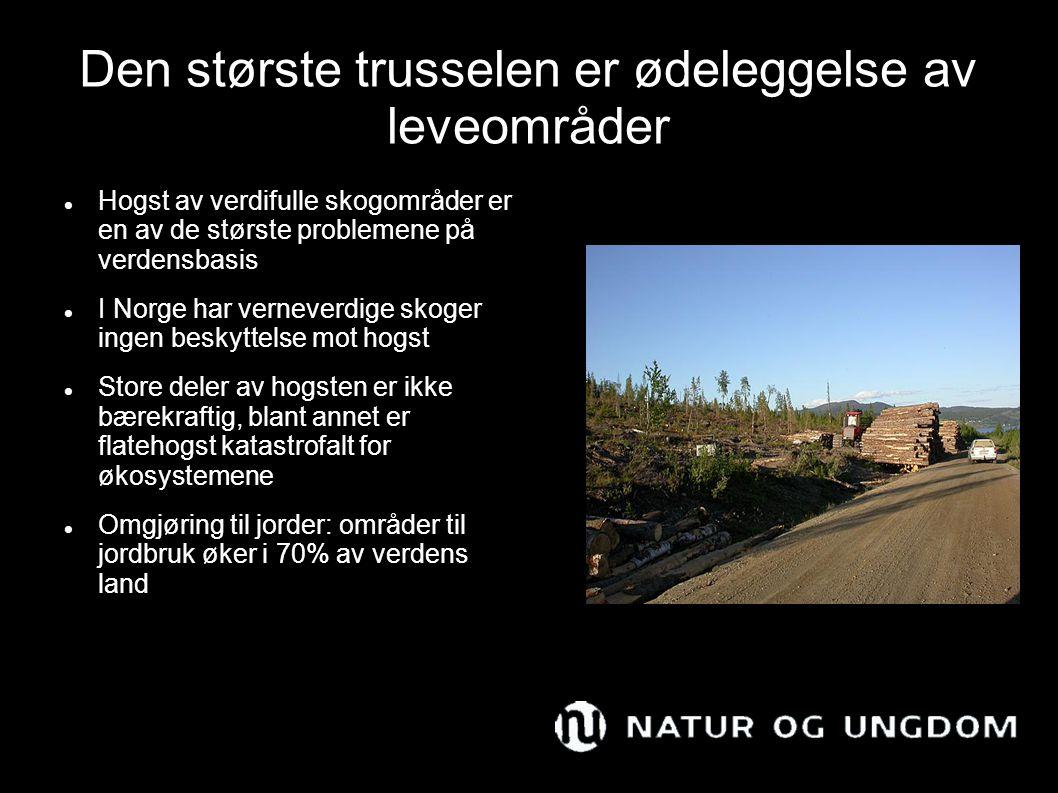 Den største trusselen er ødeleggelse av leveområder Hogst av verdifulle skogområder er en av de største problemene på verdensbasis I Norge har verneve