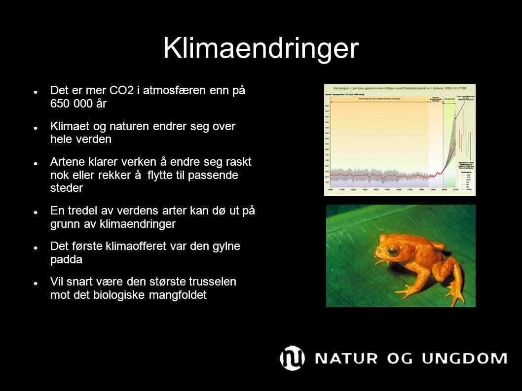 Klimaendringer Det er mer CO2 i atmosfæren enn på 650 000 år Klimaet og naturen endrer seg over hele verden Artene klarer verken å endre seg raskt nok